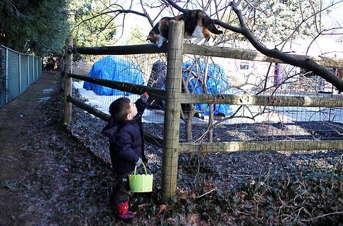 {Julian 365} Day 281 - On an Easter Egg Hunt