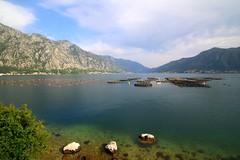 Montenegro / Crna Gora / Црна Гора