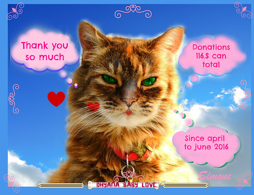 Thank you for all the donators Dhyana and Mom