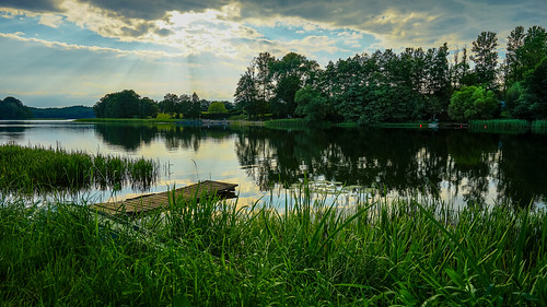 travel sunset summer vacation sky lake reflection green nature water zeiss reeds landscape flickr sony scenic lakeside serene waterscape fe1635mmf4zaoss variotessartfe1635mmf4zaoss sonya7ii sonyilce7m2 tanzpanorama