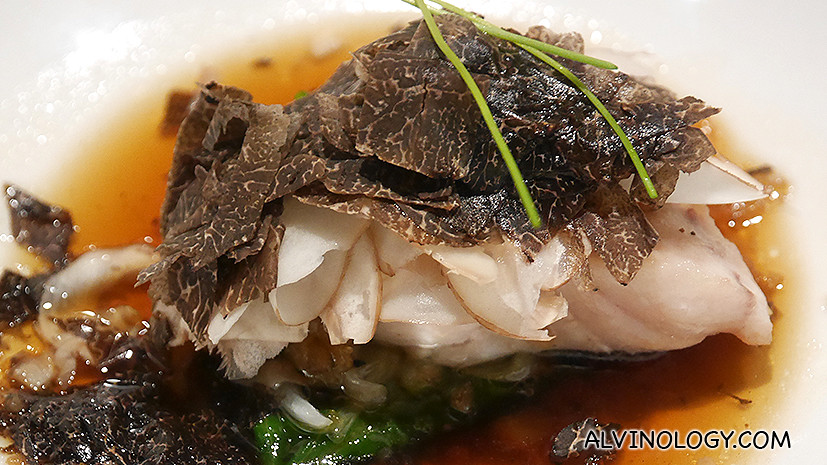 Close-up - love the tangy texture of the fish and the generous serving of truffles