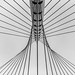 "Calatrava Bridge ""De Luit"" Hoofddorp by SkyBlue Photography Pro"
