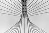 """Calatrava Bridge """"De Luit"""" Hoofddorp"""