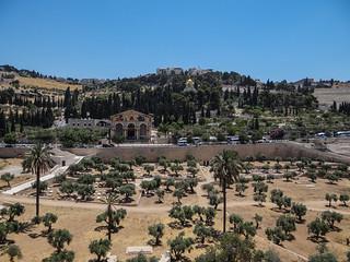 Israel - Mount of Olives behind the old Jerusalem