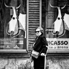De la indiferencia por Picasso