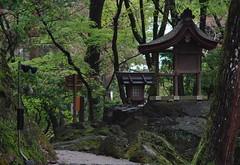 Kamigamo Jinja Shrine(上賀茂神社)