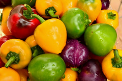 Colorful Capsicum @Ministry of Agriculture R&D…