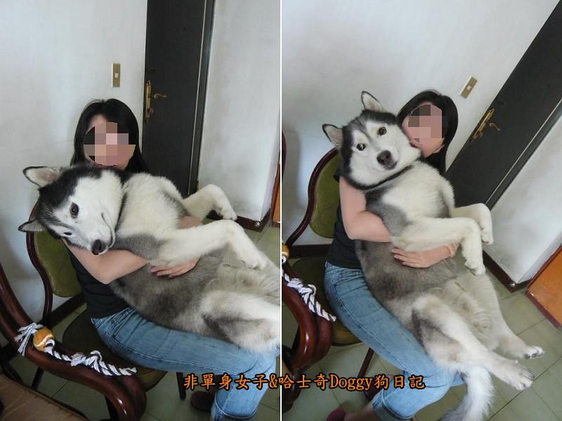 Doggy歡迎光臨11