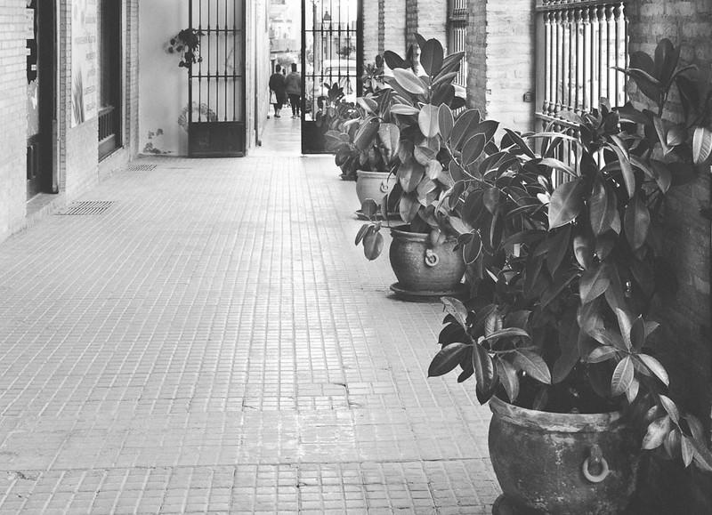 Calles de Jaen-4