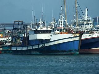 Trawler - Sceptre PEA 345 CF