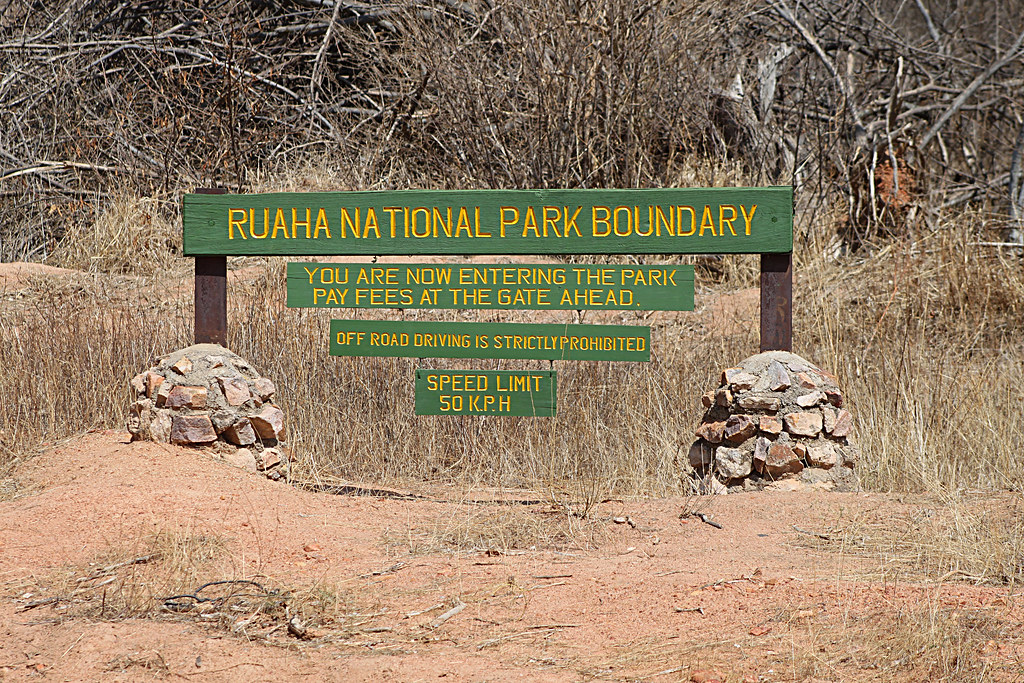 Ruaha national park photos