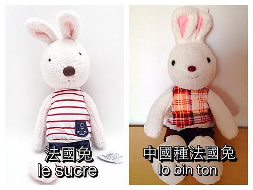 法國兔比較(原版 vs 中國種)