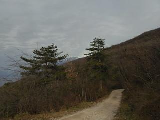 Dirt road, Monte Baldo in the back