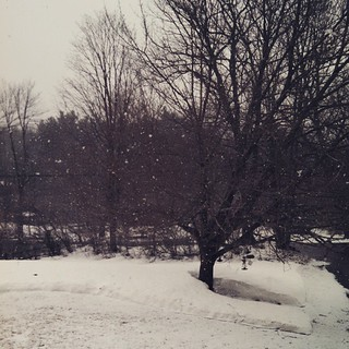 Oh look, it's snowing... #spring #snow #newengland #winterwontend #603