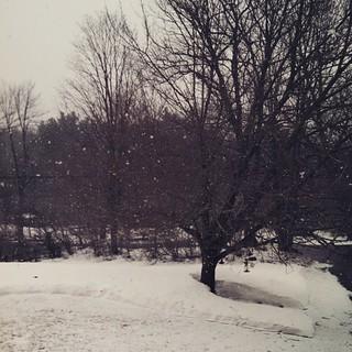Oh look, it's snowing... #spring #snow #newengland #winterwontend #603