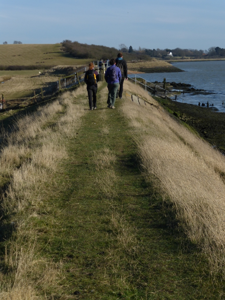 On the sea wall North Fambridge to Burnham-on-Crouch walk