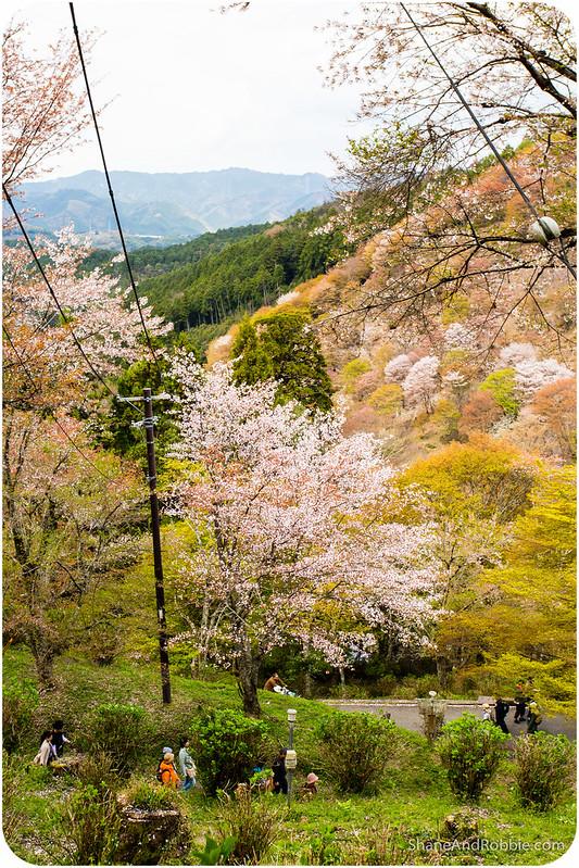 2015-04-12-20150412(Canon EOS 6D)-00038