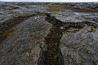 Aufgeplatze Lava in der Nähe von dem Wasserfall Dettifoss | Roland Krinner