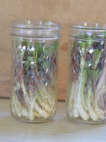 ramps for pickling