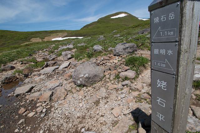 20160611-焼石岳-0448.jpg