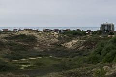 Vue panoramique sur la réserve du Westhoek et la mer du Nord