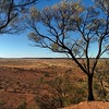 In the early 1990's the state of Queensland bought up a great deal of grazing land to put aside creating about 20 National Parks. One of them was Bladensburg, near Winton.