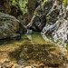 First swim in Northbrook Gorge by NettyA