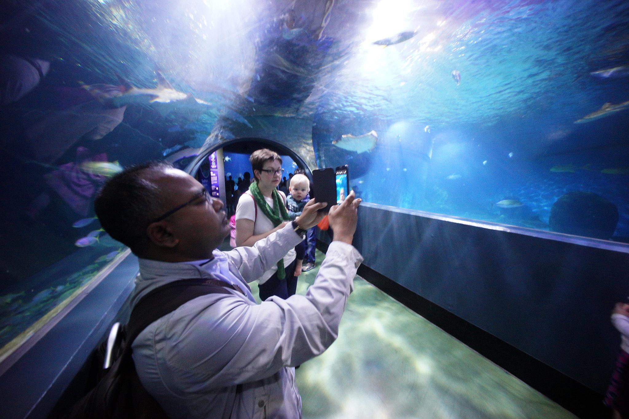 Tunnel Selfie