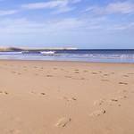 Herd Sand