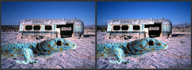 Salton Sea California 2002