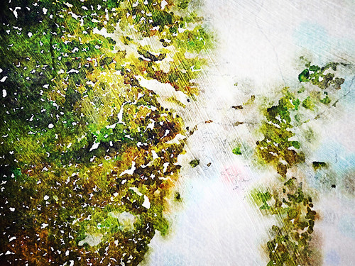 Fort Cornwallis Moldy Wall Abstract in Waterlogue and Pixlromatic