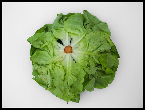 THE HEAD (OF LETTUCE)