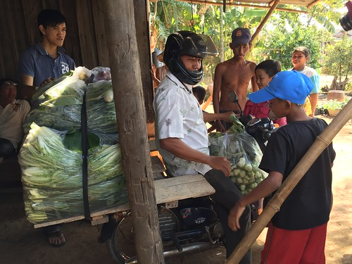 photo: man on motorcycle, with bags of vegetables piled behind him and in front of him, getting ready to go