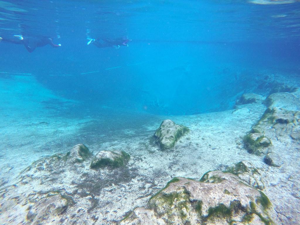 Swimming at Three Sisters Springs