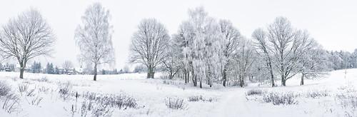 winterpano6-1