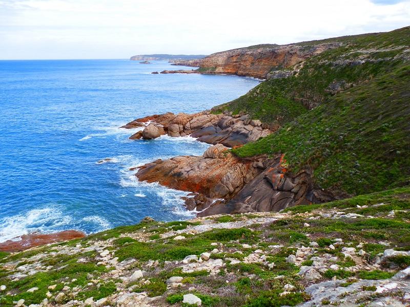 Coast from Stenhouse Bay Lookout Walk