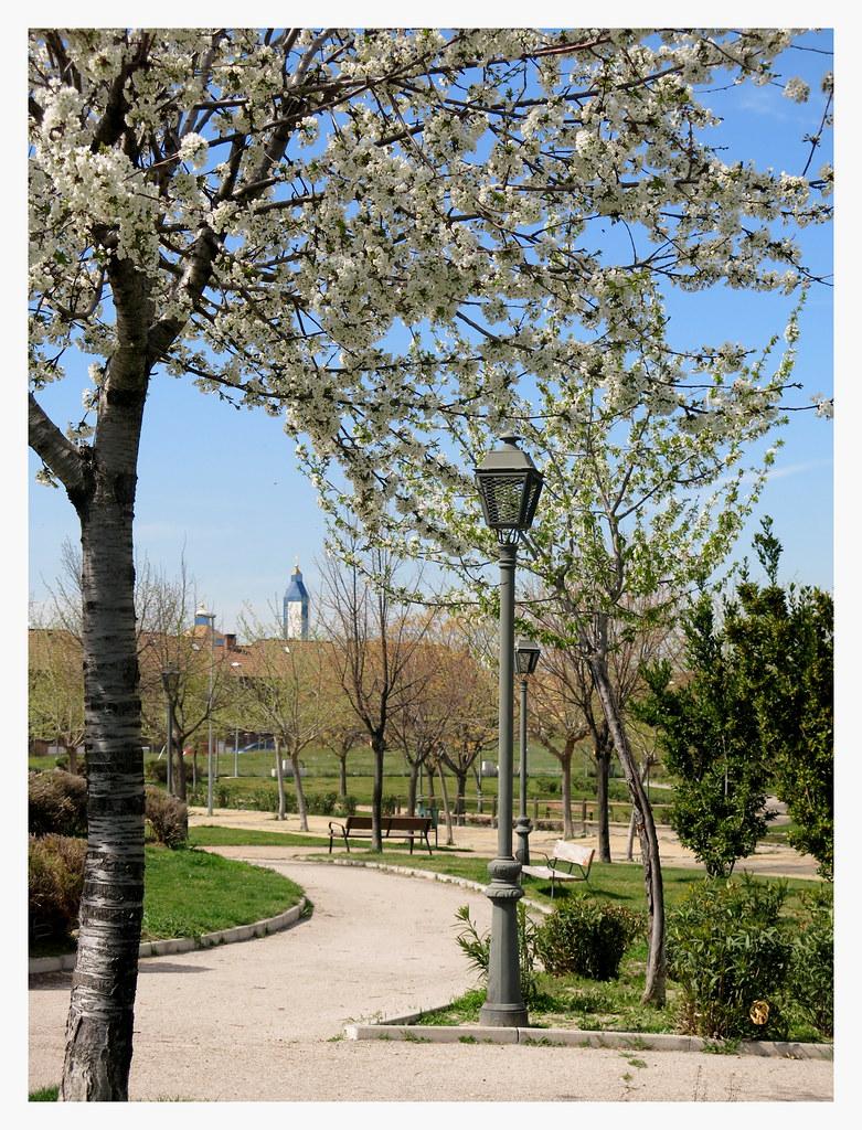 Primavera en los parques y jardines de Valdemoro