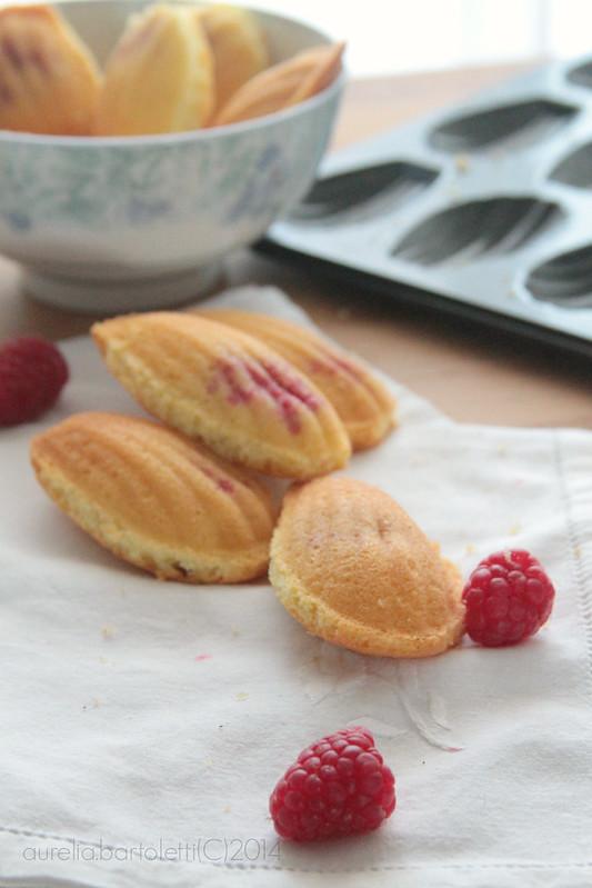 madeleine aux framboises2