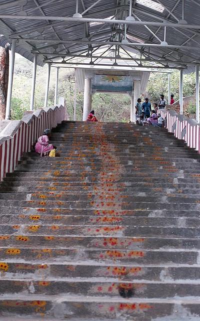 565 Steps