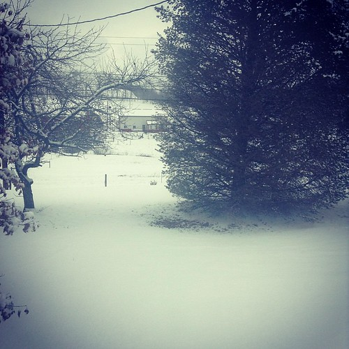 snow squareformat outsidemywindow iphoneography instagram xproii ifttt