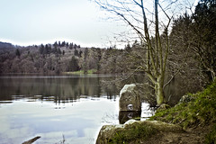 Lake & Trees - Photo of Châteauneuf-les-Bains