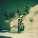 Apple Blossom - 'Roid Week Spring 2015 Day 4 by jakem