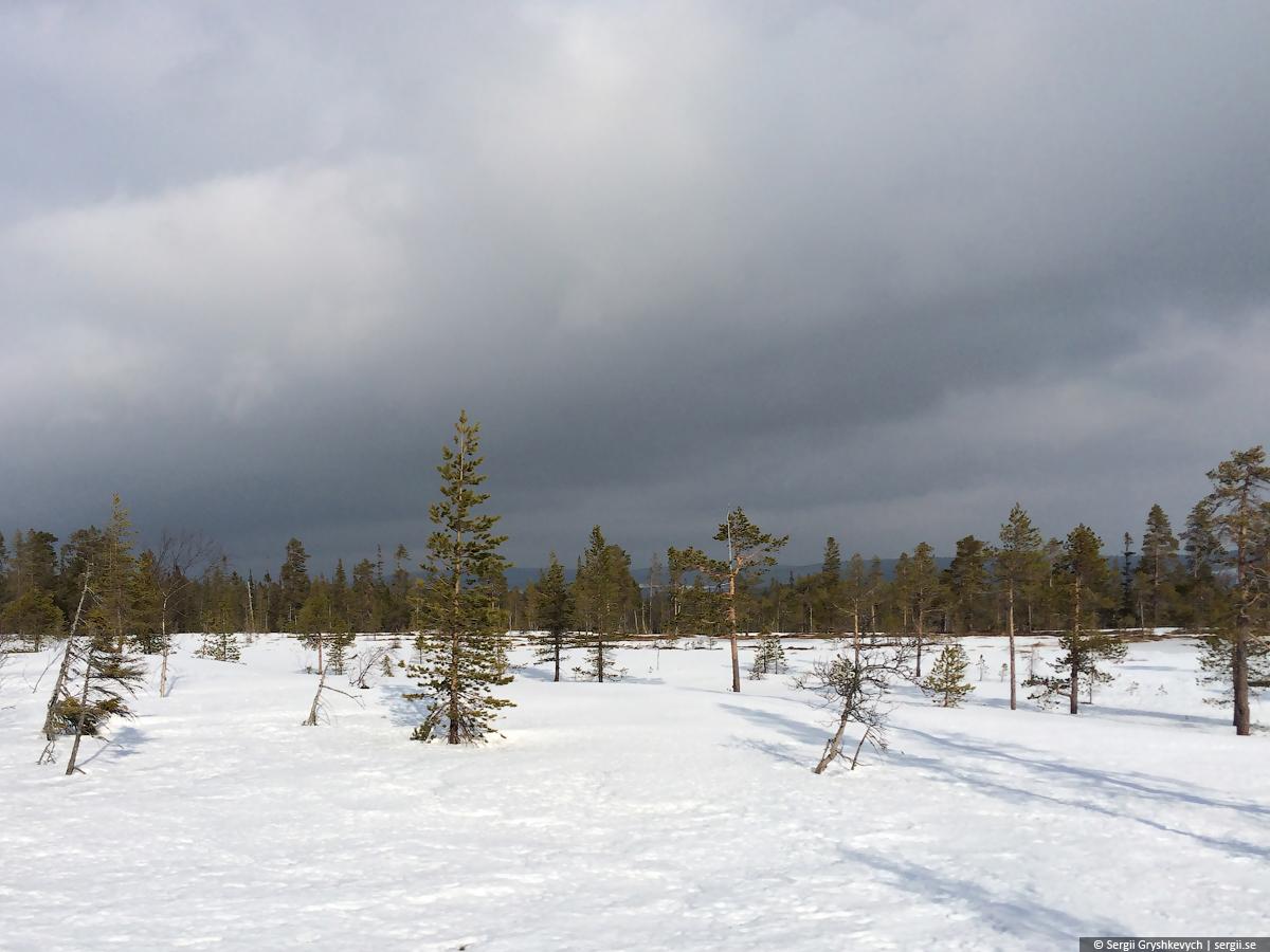 Njupskar_Fulufjallet_Dalarna_Sweden-18