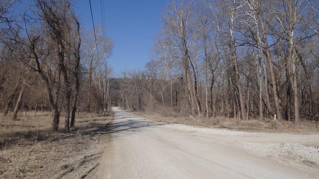 Fontenelle Forest in March