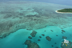 coral reef(0.0), marine biology(0.0), underwater(0.0), reef(0.0), lagoon(1.0), archipelago(1.0), atoll(1.0), sea(1.0), island(1.0), shoal(1.0),