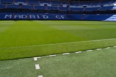 field(0.0), baseball field(0.0), player(0.0), football(0.0), net(0.0), lawn(0.0), flooring(0.0), sport venue(1.0), grass(1.0), artificial turf(1.0), stadium(1.0),