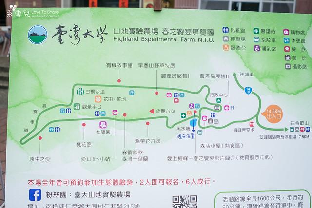 台大梅峰農場-清境一日遊-清境梅峰農場一日遊