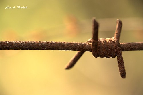 sunset sky macro nature closeup wonderful landscape amazing nice fantastic wire nikon focus dof artistic bokeh gorgeous air country border professional explore barbedwire barbed corrosion kurdistan oxide raynox hawler كوردستان اربيل سياج nikond7100