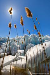 Lake Michigan ... ice push eradication attempt