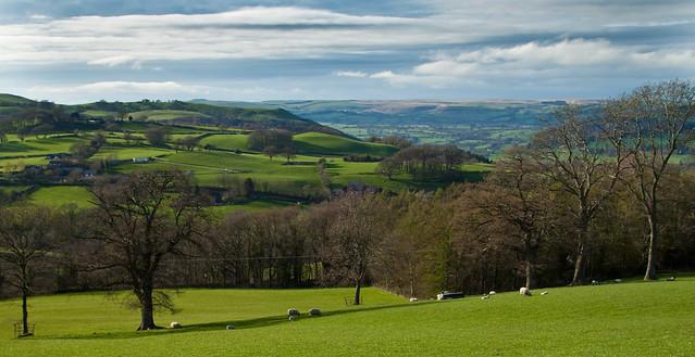 Merthyr Cynog, Wales IMG_0524.jpg